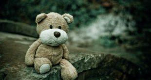 מפגש הדובים - פוסט אורח